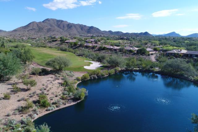 41723 N Moss Springs Court, Anthem, AZ 85086 (MLS #5834491) :: Desert Home Premier