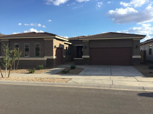 22743 E Silver Creek Lane, Queen Creek, AZ 85142 (MLS #5834536) :: Realty Executives