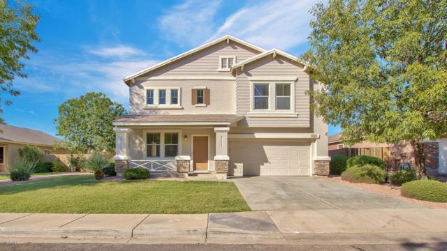 2562 E Los Alamos Street, Gilbert, AZ 85295 (MLS #5834589) :: Realty Executives