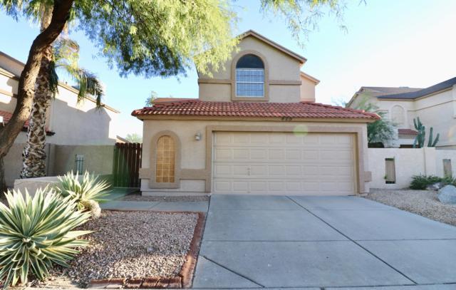 425 E Wescott Drive, Phoenix, AZ 85024 (MLS #5834591) :: RE/MAX Excalibur
