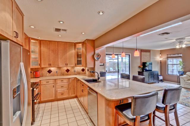 5127 E Tano Street, Phoenix, AZ 85044 (MLS #5834692) :: Kepple Real Estate Group
