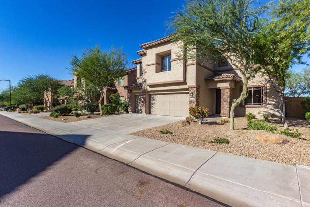 28136 N 90TH Lane, Peoria, AZ 85383 (MLS #5835038) :: Santizo Realty Group