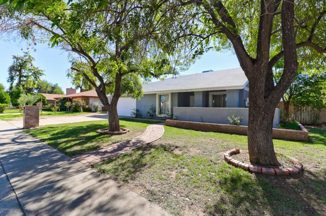 2401 W Le Marche Avenue, Phoenix, AZ 85023 (MLS #5835086) :: The Everest Team at My Home Group