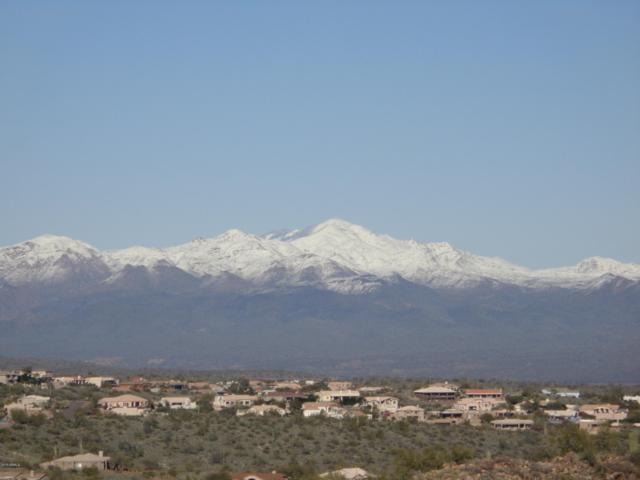 14523 N Quartz Court, Fountain Hills, AZ 85268 (MLS #5835784) :: Brett Tanner Home Selling Team