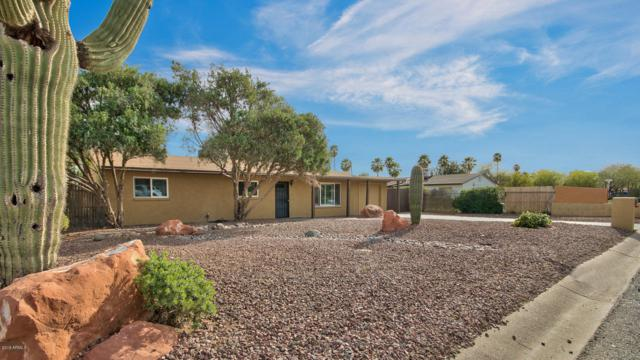 4109 E Bluefield Avenue, Phoenix, AZ 85032 (MLS #5835931) :: Revelation Real Estate