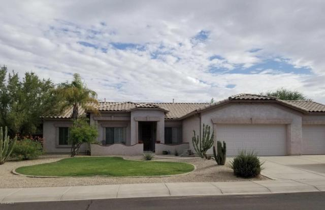 1081 E Mead Drive, Chandler, AZ 85249 (MLS #5836701) :: The Bill and Cindy Flowers Team