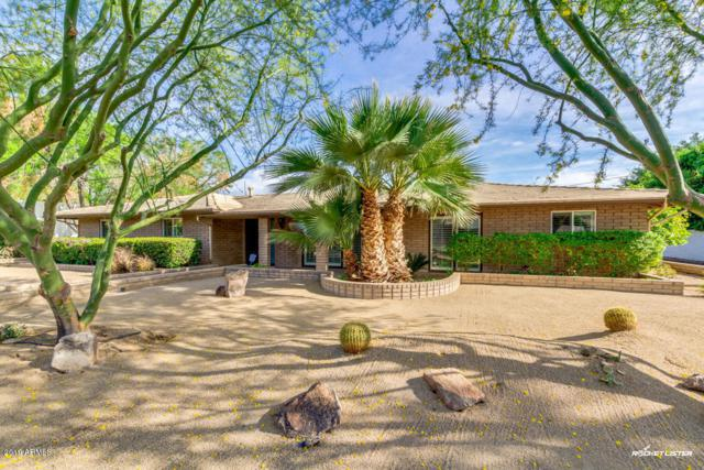 531 W Why Worry Lane, Phoenix, AZ 85021 (MLS #5836949) :: Devor Real Estate Associates