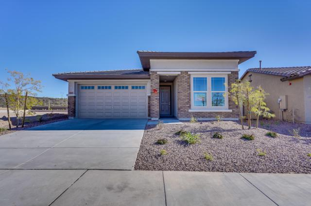 29695 N 114TH Lane, Peoria, AZ 85383 (MLS #5837126) :: The Results Group