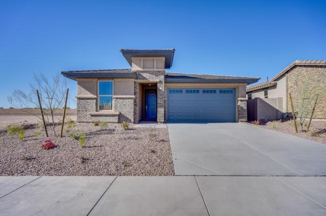 29960 N 115TH Glen, Peoria, AZ 85383 (MLS #5837306) :: The Results Group