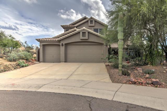 28227 N 111TH Way, Scottsdale, AZ 85262 (MLS #5837394) :: Gilbert Arizona Realty