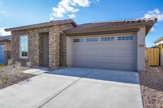 29978 N 115TH Glen, Peoria, AZ 85383 (MLS #5837551) :: The Results Group