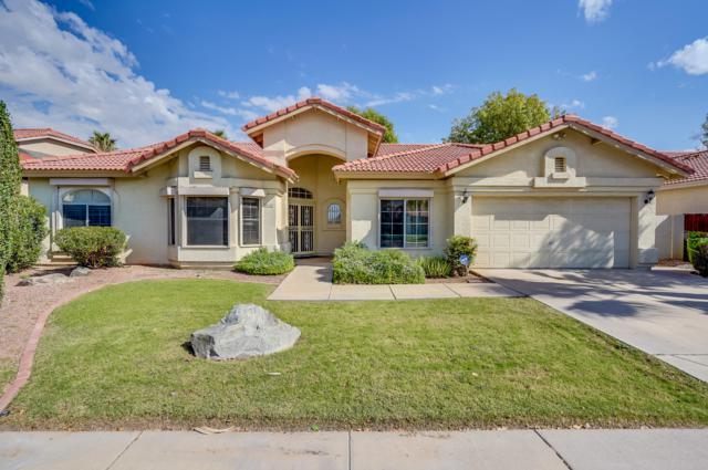 3109 N Meadow Drive, Avondale, AZ 85392 (MLS #5837659) :: CC & Co. Real Estate Team