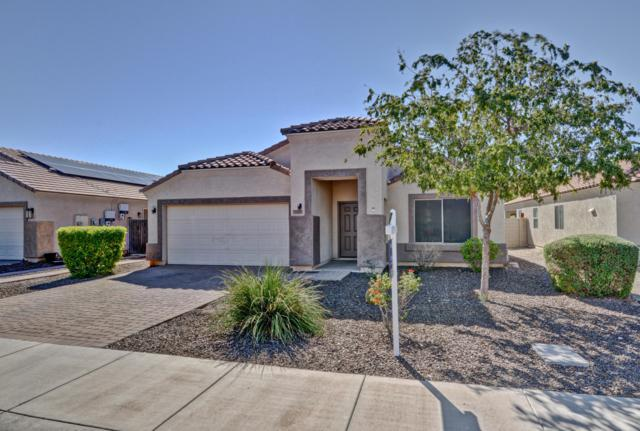 12015 W Morning Dove Drive, Sun City, AZ 85373 (MLS #5837863) :: The Garcia Group
