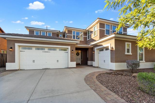 31676 N 130TH Lane, Peoria, AZ 85383 (MLS #5838556) :: Team Wilson Real Estate