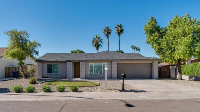 6506 S Elm Street, Tempe, AZ 85283 (MLS #5838575) :: Yost Realty Group at RE/MAX Casa Grande