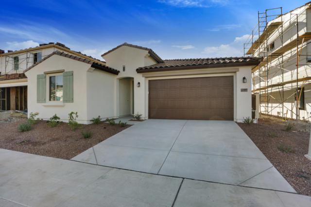 21057 W Almeria Road, Buckeye, AZ 85396 (MLS #5839136) :: The Results Group