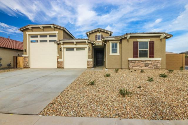 16078 W Laurel Lane N, Surprise, AZ 85379 (MLS #5839502) :: The W Group