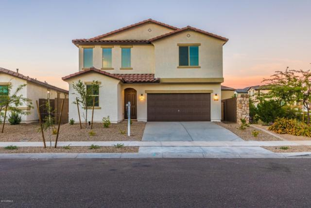 16600 W Yucatan Drive, Surprise, AZ 85388 (MLS #5839510) :: The Everest Team at My Home Group