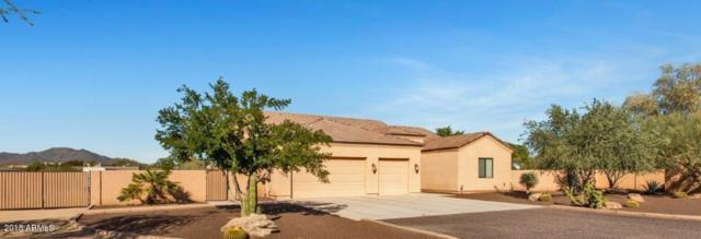 1208 W Carriage Drive, Phoenix, AZ 85086 (MLS #5839566) :: The Jesse Herfel Real Estate Group