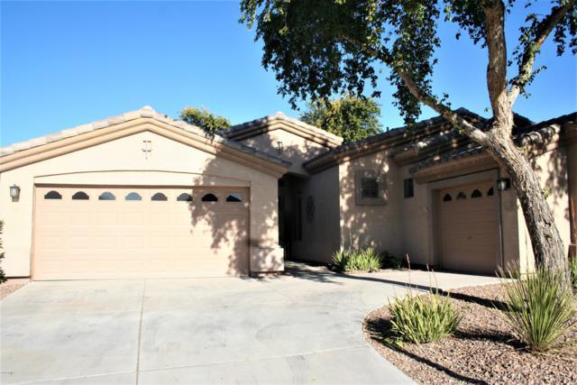 10412 E Los Lagos Vista Avenue, Mesa, AZ 85209 (MLS #5839668) :: Gilbert Arizona Realty