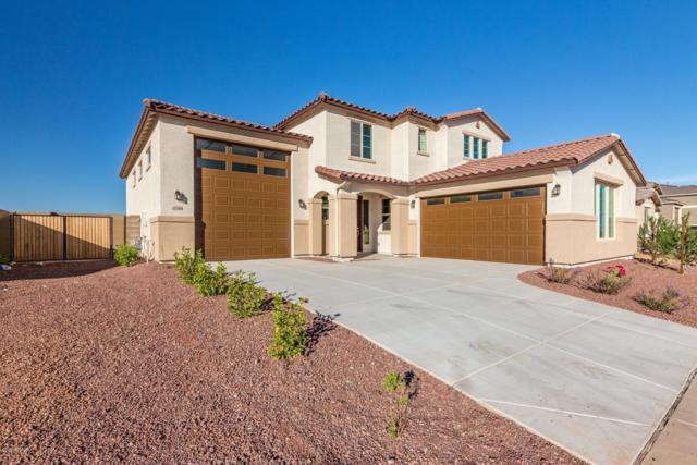 17308 W Blue Sky Drive, Surprise, AZ 85387 (MLS #5839942) :: Arizona 1 Real Estate Team
