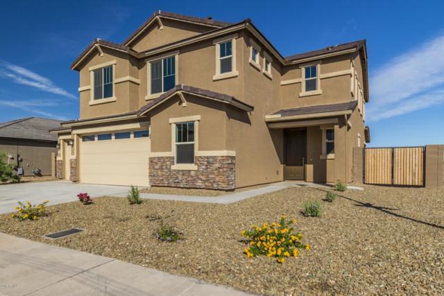 7912 W Atlantis Way, Phoenix, AZ 85043 (MLS #5839947) :: Lifestyle Partners Team