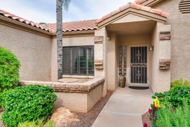 4659 N 84TH Way N, Scottsdale, AZ 85251 (MLS #5840226) :: CC & Co. Real Estate Team