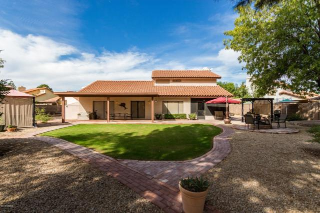 2333 E Pelican Court, Gilbert, AZ 85234 (MLS #5840482) :: Relevate | Phoenix