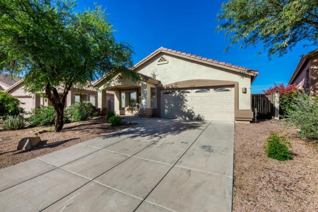 10306 E Raintree Drive, Scottsdale, AZ 85255 (MLS #5840545) :: The Jesse Herfel Real Estate Group