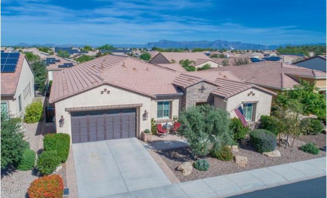 810 E Harmony Way, San Tan Valley, AZ 85140 (MLS #5840606) :: Yost Realty Group at RE/MAX Casa Grande