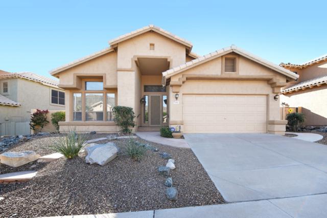 803 E Goldenrod Street, Phoenix, AZ 85048 (MLS #5840918) :: Power Realty Group Model Home Center