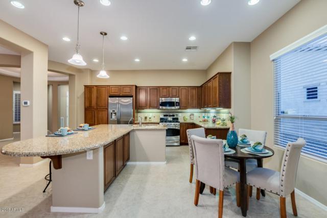 13051 W Evergreen Terrace, Peoria, AZ 85383 (MLS #5840945) :: Lux Home Group at  Keller Williams Realty Phoenix
