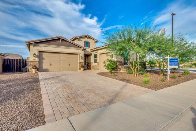 3930 E Chestnut Lane, Gilbert, AZ 85298 (MLS #5841002) :: Gilbert Arizona Realty