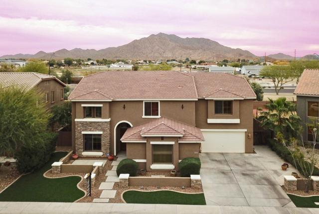 3647 E Ravenswood Drive, Gilbert, AZ 85298 (MLS #5842041) :: Yost Realty Group at RE/MAX Casa Grande