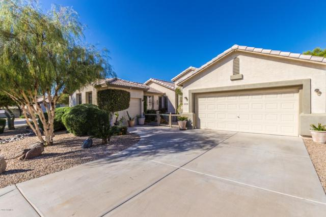 14346 W Edgemont Avenue, Goodyear, AZ 85395 (MLS #5842049) :: The W Group