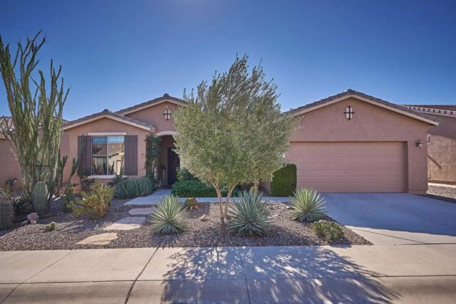 42607 W Constellation Drive, Maricopa, AZ 85138 (MLS #5842118) :: Kortright Group - West USA Realty
