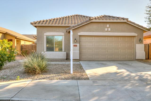 46165 W Starlight Drive, Maricopa, AZ 85139 (MLS #5842317) :: Lifestyle Partners Team