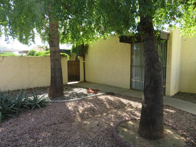 4202 N 28TH Street #11, Phoenix, AZ 85016 (MLS #5842440) :: The Everest Team at My Home Group