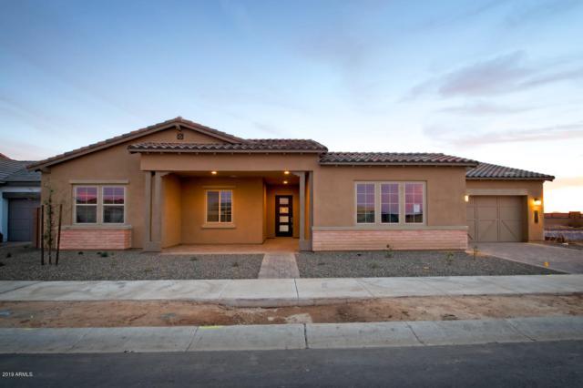 21027 E Cattle Drive, Queen Creek, AZ 85142 (MLS #5843193) :: CC & Co. Real Estate Team