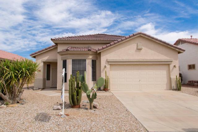 18563 N 116TH Drive, Surprise, AZ 85378 (MLS #5843248) :: Yost Realty Group at RE/MAX Casa Grande