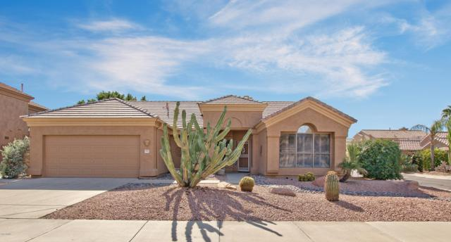 9737 E Friess Drive, Scottsdale, AZ 85260 (MLS #5843835) :: Lifestyle Partners Team