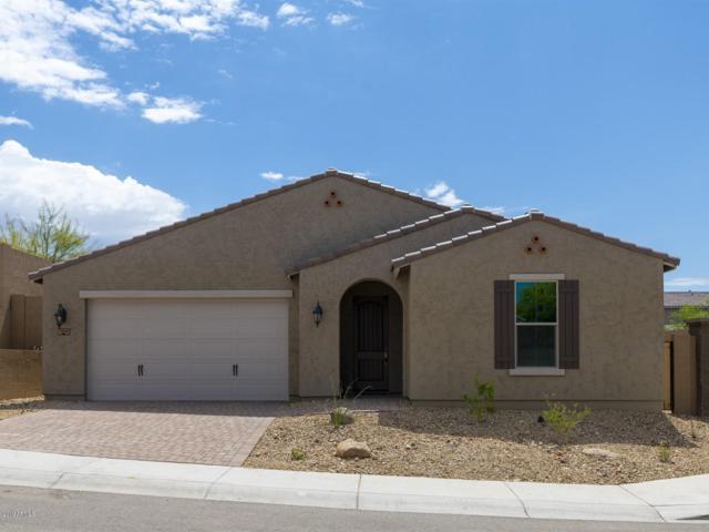 2945 W Amber Sun Drive, Phoenix, AZ 85085 (MLS #5843904) :: Yost Realty Group at RE/MAX Casa Grande