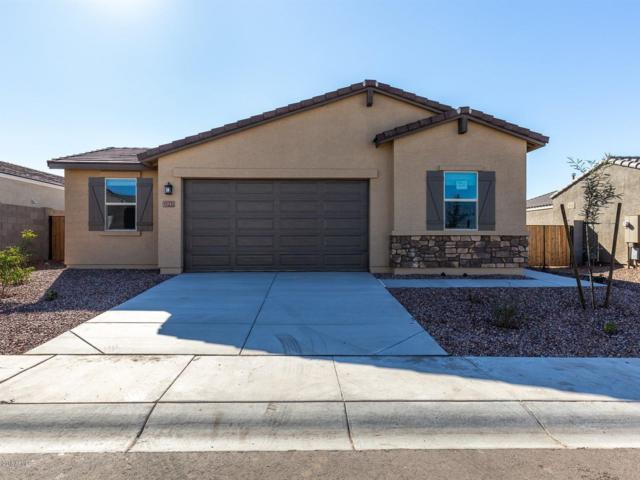 10231 W Southgate Avenue, Tolleson, AZ 85353 (MLS #5843934) :: The Jesse Herfel Real Estate Group