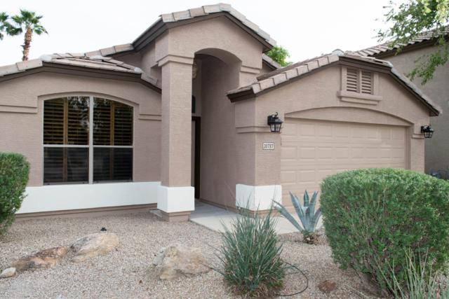20737 N 37TH Way, Phoenix, AZ 85050 (MLS #5844177) :: Arizona Best Real Estate