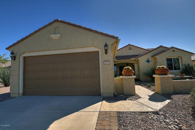 6671 W Trenton Court, Florence, AZ 85132 (MLS #5844282) :: The Jesse Herfel Real Estate Group
