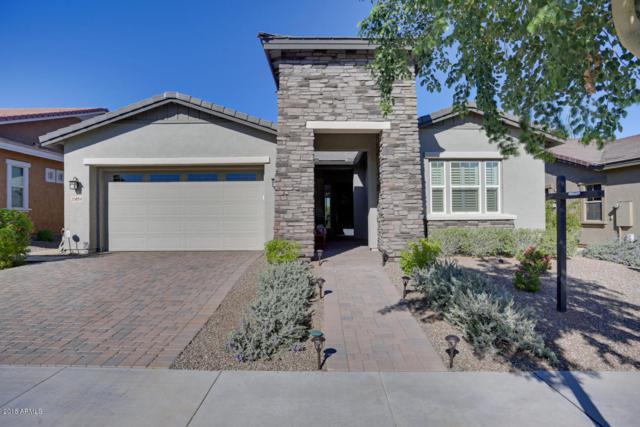 20854 W Hillcrest Boulevard, Buckeye, AZ 85396 (MLS #5844367) :: Gilbert Arizona Realty