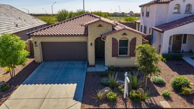 9845 W Via Del Sol, Peoria, AZ 85383 (MLS #5844480) :: Arizona 1 Real Estate Team