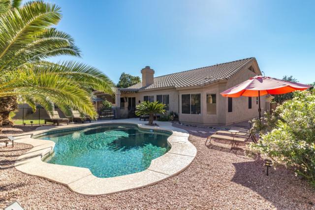 1312 W Longhorn Drive, Chandler, AZ 85286 (MLS #5844483) :: Lux Home Group at  Keller Williams Realty Phoenix