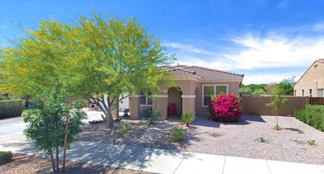 24286 S 208TH Place, Queen Creek, AZ 85142 (MLS #5844499) :: Yost Realty Group at RE/MAX Casa Grande