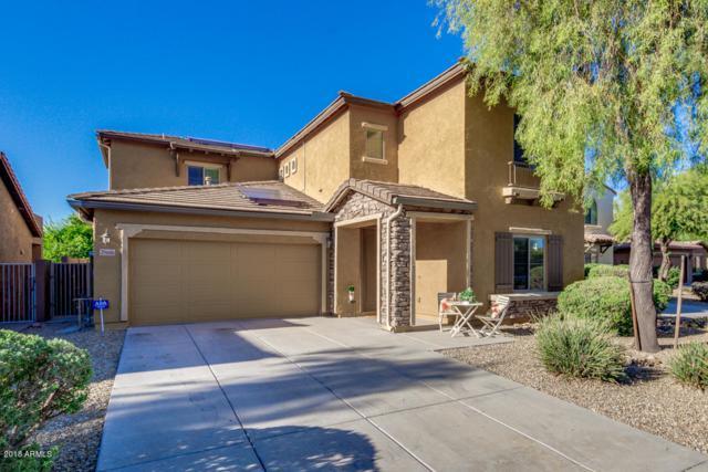 25616 N 51ST Drive, Phoenix, AZ 85083 (MLS #5844557) :: The Laughton Team